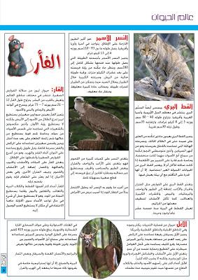 المجلة المدرسية  مجلة الواحة للتحميل العدد 6 - صفحة 2 Template218