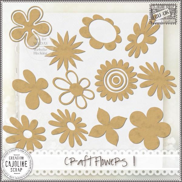 CRAFT FLOWERS 1 - CU Cajoline_craftflowers1_cu