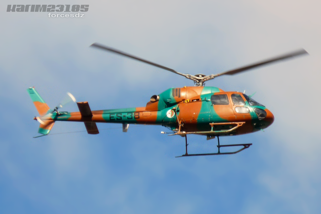 صور مروحيات القوات الجوية الجزائرية Ecureuil/Fennec ] AS-355N2 / AS-555N ] - صفحة 2 Ffg03