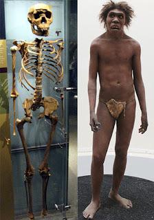 Evolution is a Lie - Intelligent Design is the Truth! Turkana-boy-bs
