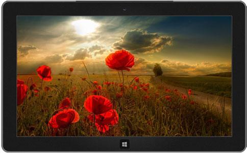 اجمل 10 ثيمات رسمية لويندوز 7  10-windows-7-themes-6
