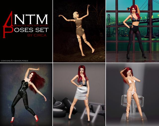 ANTM set 1 Antmposesset