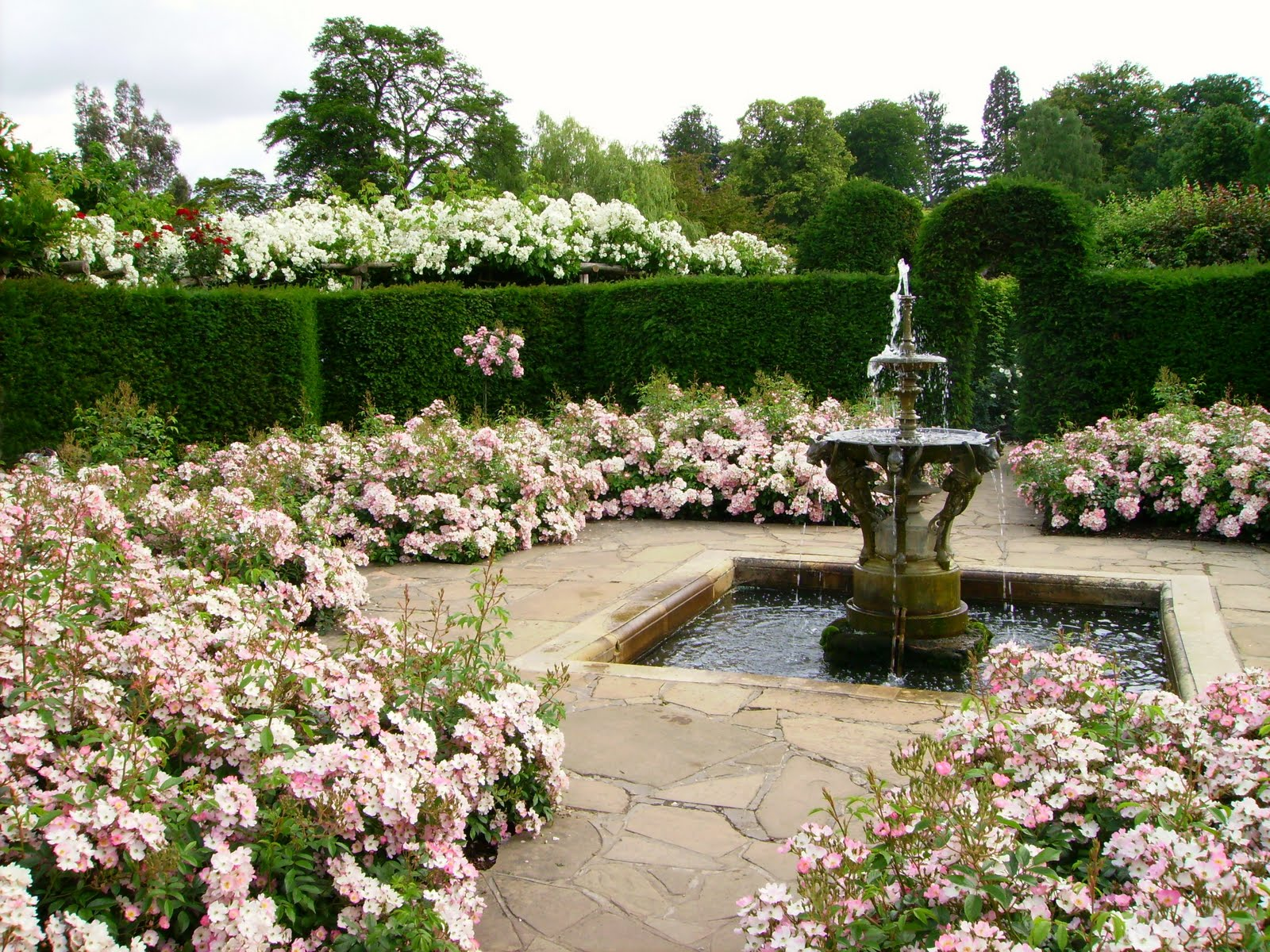 Vrtovi - Page 2 Hever_Castle_rose_garden_with_fountain