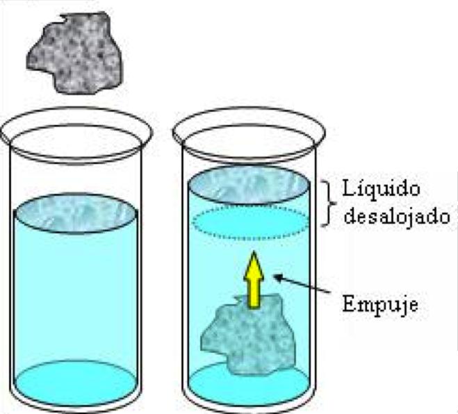 ¿Cómo funciona un anfibio? Volumen