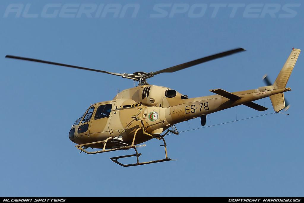صور مروحيات القوات الجوية الجزائرية Ecureuil/Fennec ] AS-355N2 / AS-555N ] - صفحة 3 P1060613