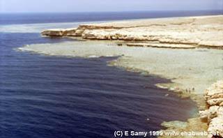 موسوعة شاملة عن المحميات الطبيعية - حصريا على منتدى واحة الإسلام 0530