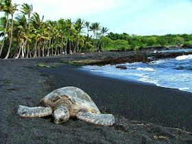 Las 17 playas más increíbles del mundo Playa22