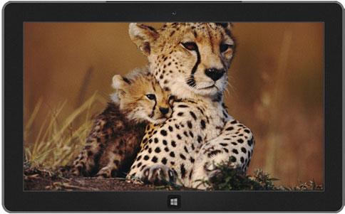 اجمل 10 ثيمات رسمية لويندوز 7  10-windows-7-themes-7