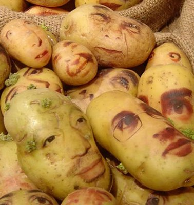 RIMES EN IMAGES - Page 2 Portrait-patate2