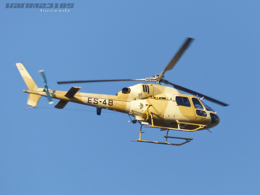 صور مروحيات القوات الجوية الجزائرية Ecureuil/Fennec ] AS-355N2 / AS-555N ] - صفحة 3 P1050674