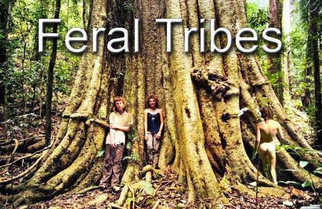 Forest Action:  Saving Little Wonder 3 %7EFeral-Tribes