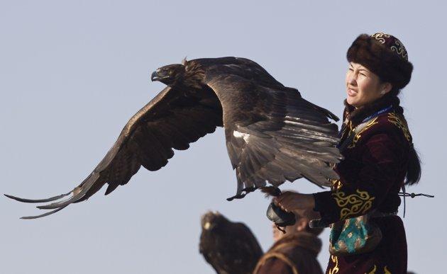 Comparação do tamanho de águias  com relação ao homem. Eh33