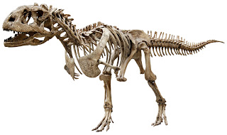 Dinosaur Hoax - Dinosaurs Never Existed! Pf3267_majung2_h