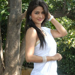 Actress Kumkum Cute Pics in White Saree Kum-kum-3