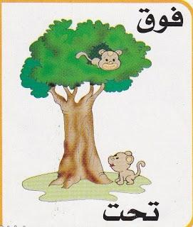 لتعليم الاطفال الصفات المضادة بالرسومات الشيقة باللغة العربية حضانة KG1 & KG2 5