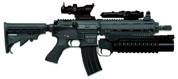 ابني جيشك الخاص بأي سلاح تريد  - صفحة 3 Hk416withtrijiconado