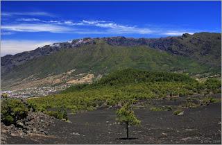 LA MAGNANIMIDAD (LA CAPACIDAD DE SERVICIO A LOS DEMÁS) Mirador-de-los-Llanos-del-Jable-a17819160