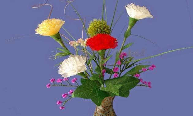 Chúc mừng sinh nhật lần thứ 46 Mod nghiệp dư (Trần Thanh Long)! Hoa-cam-chuong-bang-vai-voan-6