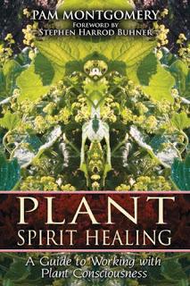 Spiritual Science 1695781