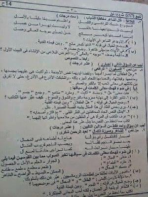 ورقة امتحان لغة عربية 3 ثانوى 2014 نظام حديث + نموذج الاجابة Bpl9_f4IAAEz2vh