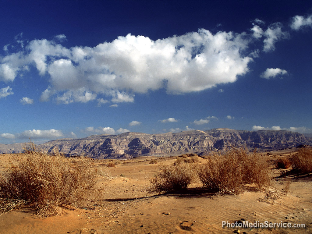 تصور لتطوير انواع اسلحة الجيش المصري بسيناء  Sinai