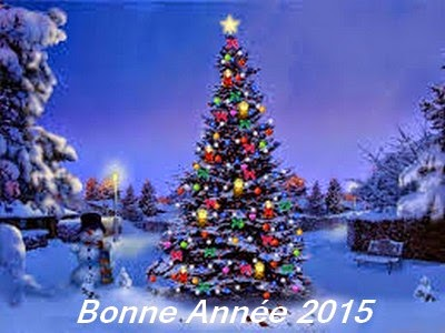 Voeux pour 2015 BBBBBB