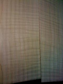 VIDÉO EN LIGNE: OM Englemann/érable ondé à grande feuille - Page 2 IMG_1138