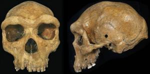 Mysteries That Rewrite Human History  Skull