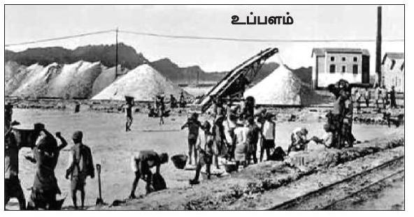 வரலாற்று சிறப்புமிக்க படங்கள் .... Uppu