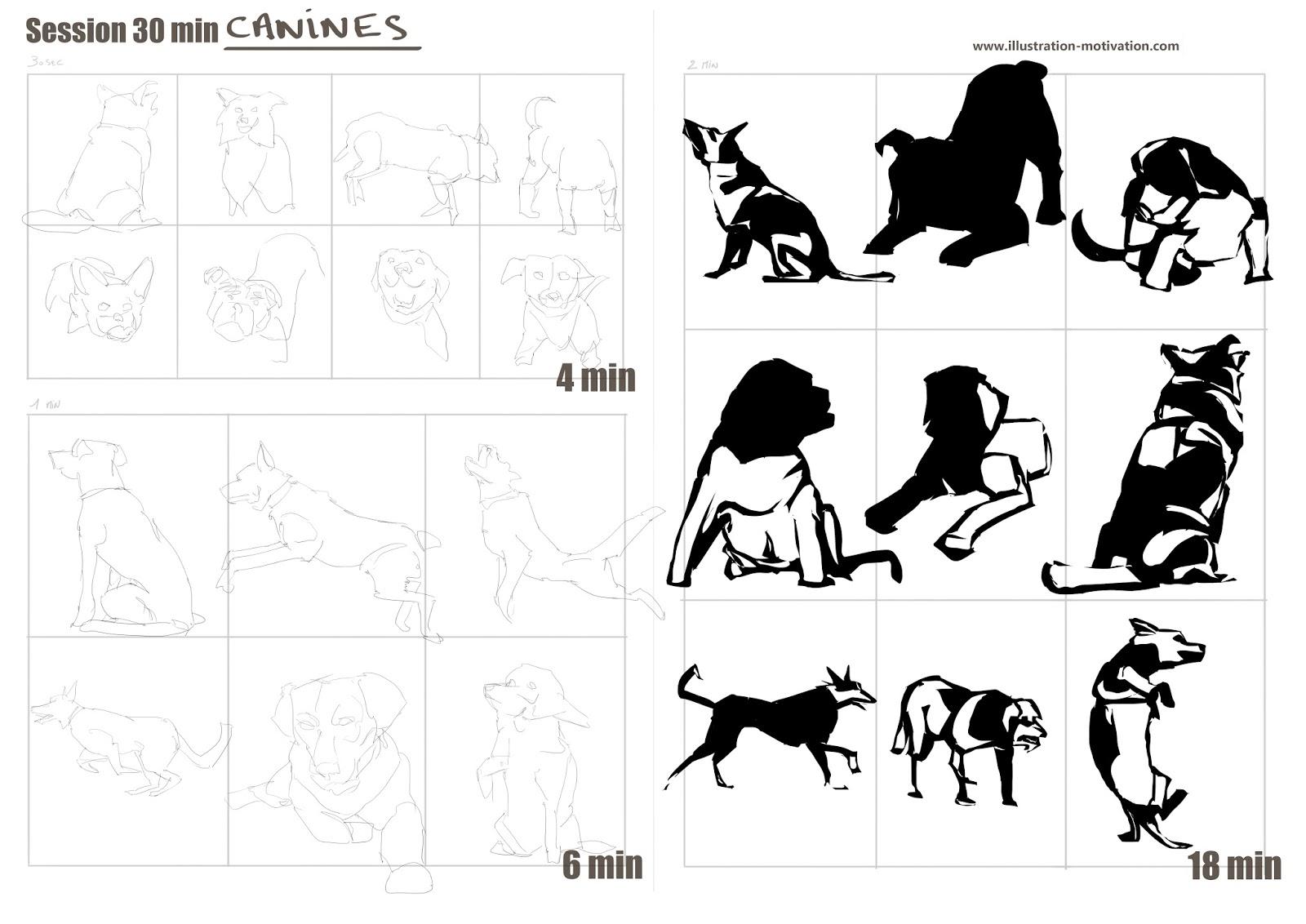 [SPOLYK] - Geometries & sketches 116