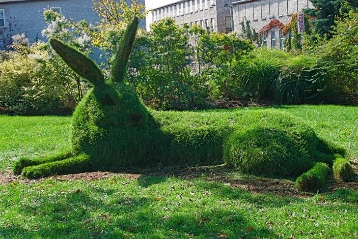 Sculpture végétal  - Page 3 IMG_2691