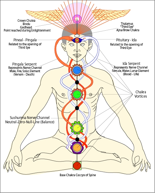 Warning For Religious People   1chakras_kundalini
