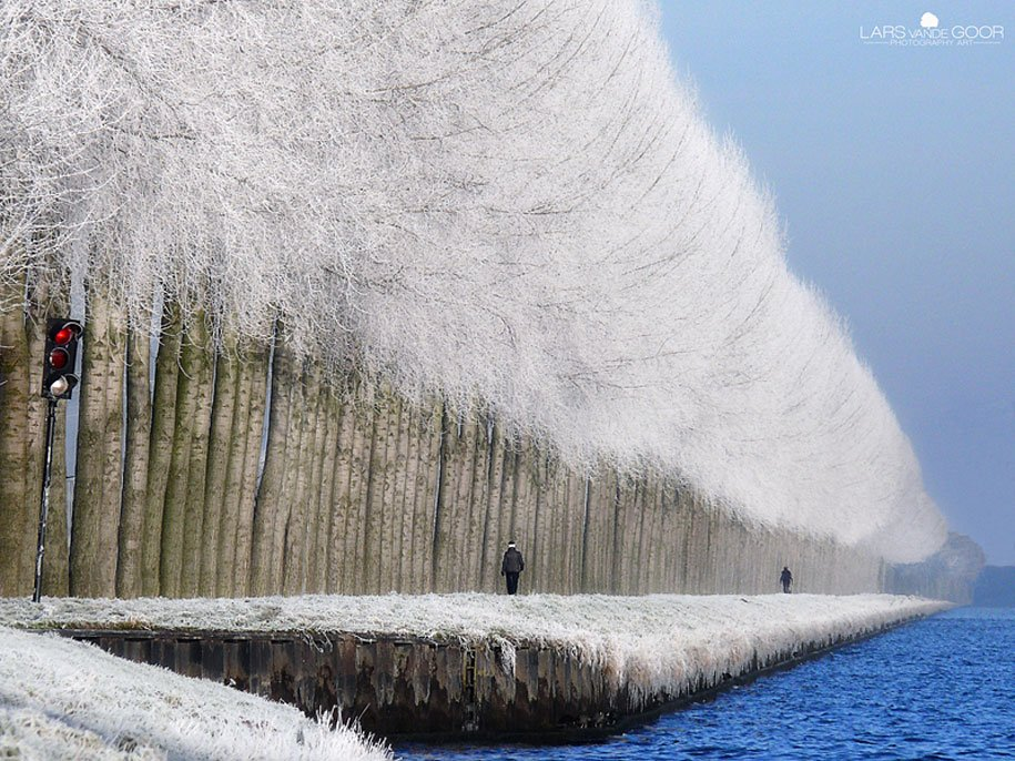 اجمل صور الطبيعه بلشتاء Winter-landscapes-10