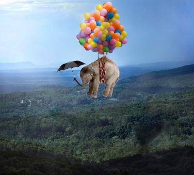 Bienvenidos al nuevo foro de apoyo a Noe #262 / 30.05.15 ~ 02.06.15 - Página 2 Elefante-volador