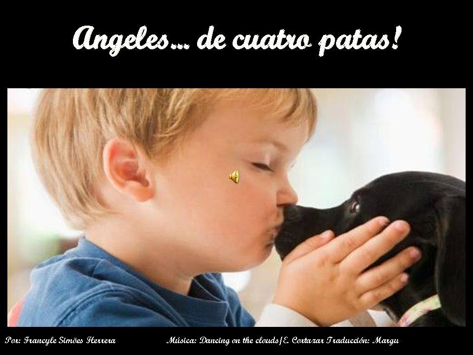 ****ANGELES DE 4 PATAS**** Diapositiva1