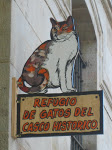 Firmas contra el cierre del refugio de gatos de Vitoria IMG_8701