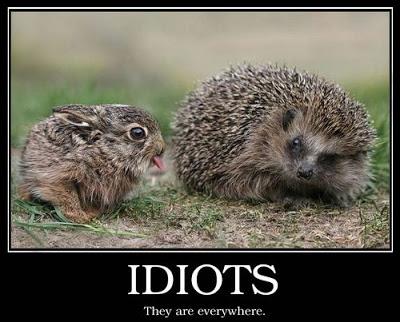 Hello Idiots