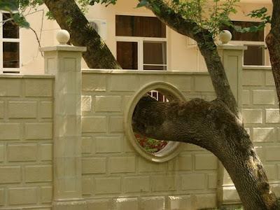 Δεν κόβουμε τα δέντρα ποτεεεεεεε............ Photopodborka_107