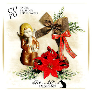 my first CU/PU Freebie!!! For Christmas by Amisza vel BlackCat Designs Preview