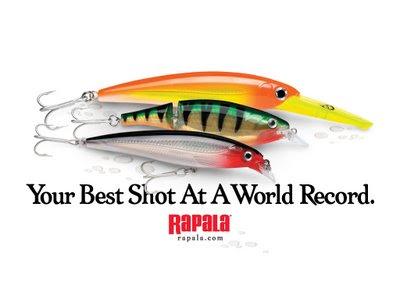 La Buena Alimentación de un Rapala Pro Staff  ;) Your-Best-Shot