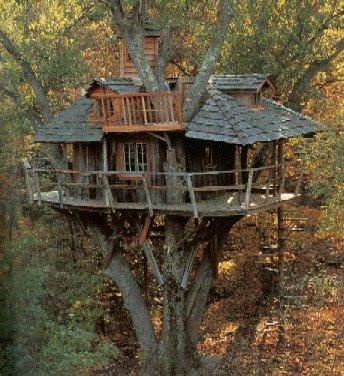 Description du lieu Treehouse_01