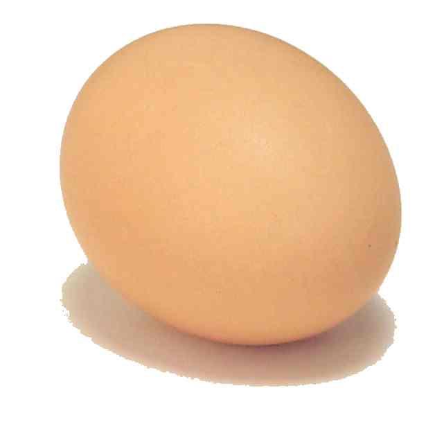 قصة عجيبة Egg-photo