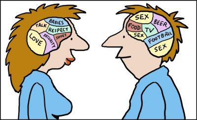 Influencer un enfant - Création d'un type In Vivo - Page 2 Male_and_female_brains_118055