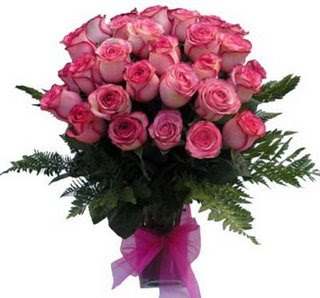 FELIZ MES DEL AMOR Y AMISTAD...... Rosas