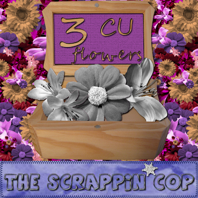 Lots of CU Flowers on my blog ScrappinCopCuFlower3_preview