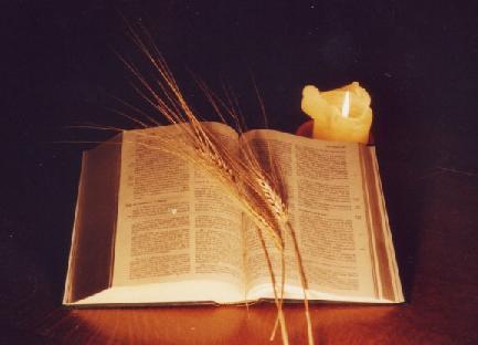 Michel blogue avec Louise Morin/Sujet/ toute vérité n'est pas bonne à dire.../ BIBLE