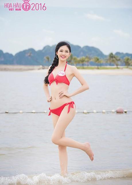 (TỒNG HỢP) Những ứng viên sáng giá cho vương miện Hoa hậu Việt Nam 2016 8_28143