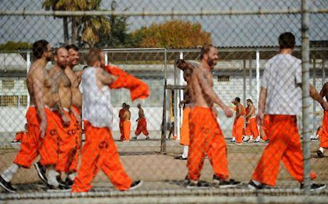"""Không chỉ đi tù, tội phạm hiếp dâm trẻ em còn bị bạn tù dùng những """"nhục hình"""" kinh khủng thế này 3_100157"""