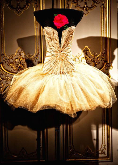 Wedding Dresses. - Page 3 Tumblr_lfn34vTaPU1qgqq8eo1_500