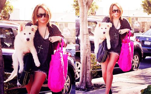 Miley Cyrus [2] - Page 3 Tumblr_lqjawvr7Hr1qjed6lo1_500